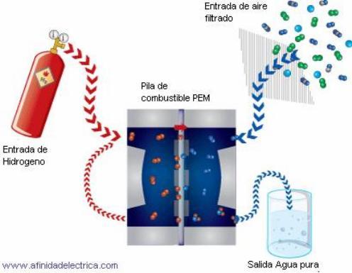 Imagen de: afinidadelectrica.com